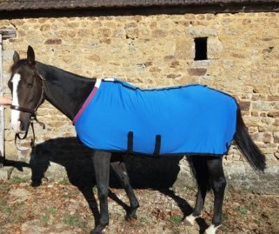 Elite Stable rug inc.belly band